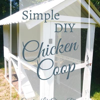 Simple DIY Chicken Coop