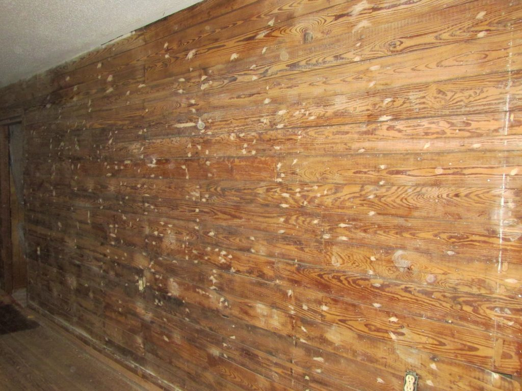 exposed shiplap wall with nail filler